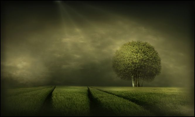 grünes...