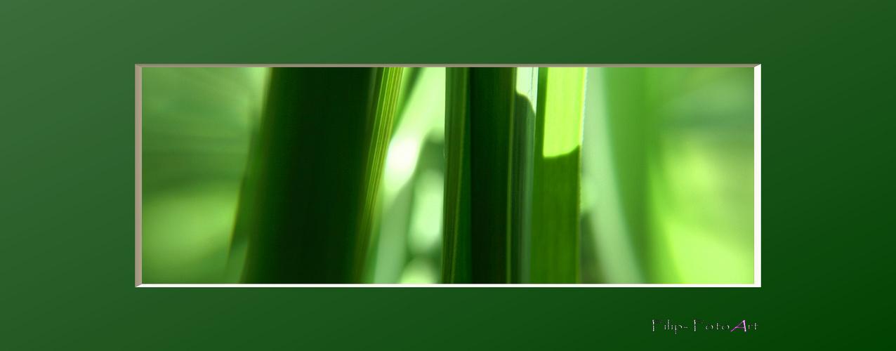 grünes