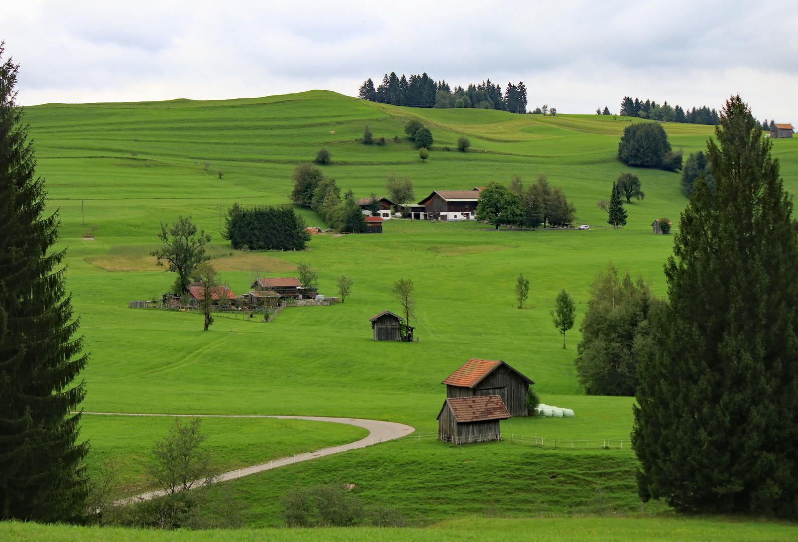 Grünes Allgäu