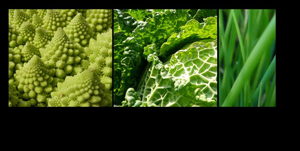 . grünes gemüse .