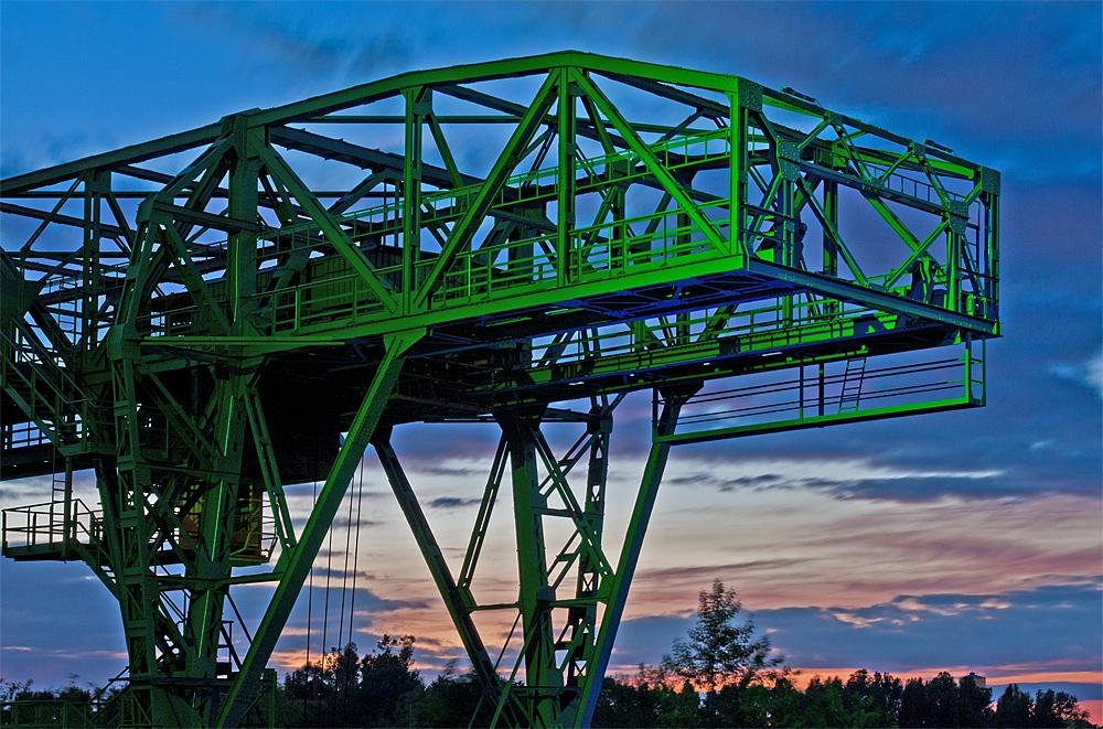 grünes Krokodil zur blauen Stunde...
