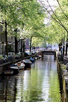 grünes Licht in Amsterdam