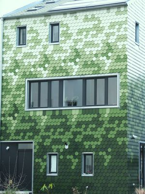Grünes Wohnhaus Berlin-Pankow