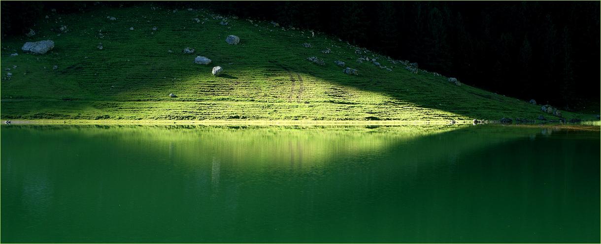 Grünlicht