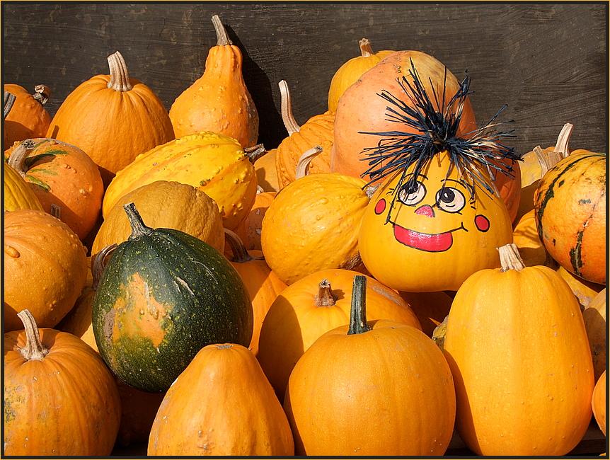 Grüße an die Herbstsonne...