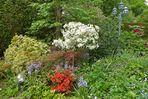 Grüße aus meinem Garten -