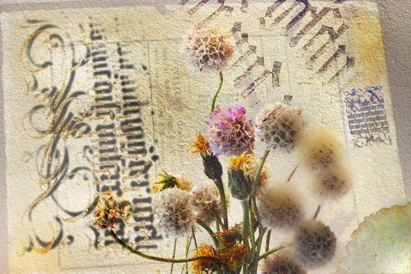 Grüße von gestern - Blumen von heute
