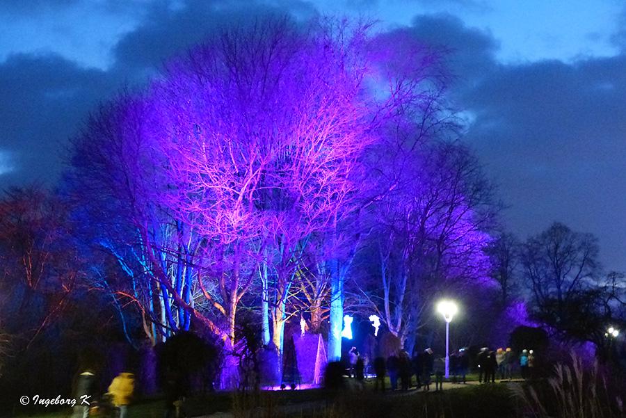 Grugapark - Lichterwochen