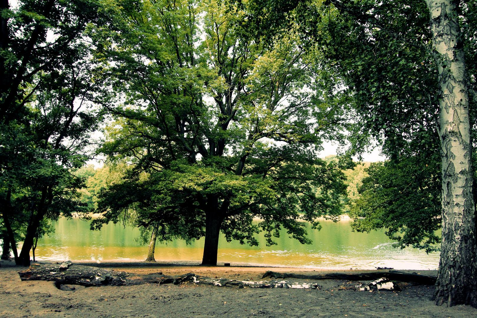 grunewald