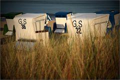 G.S 36