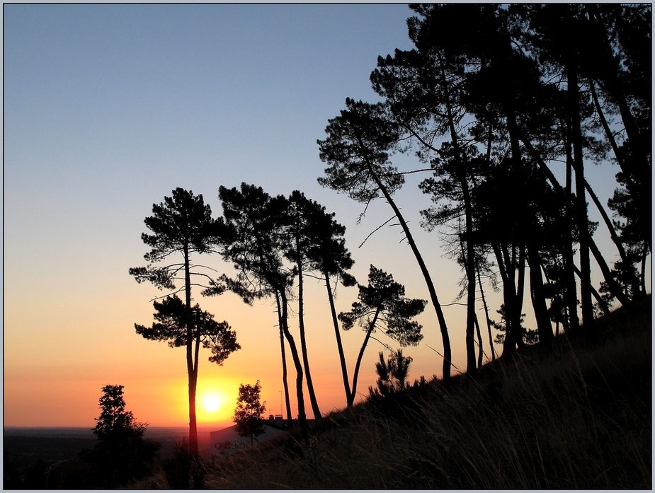 Guarda sunrise