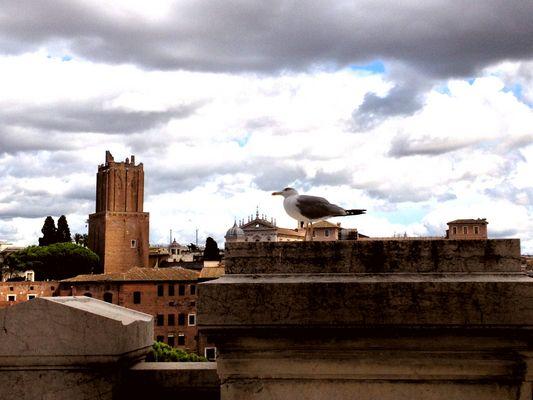 Guardia su Roma