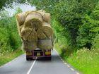 Güterverkehr in Irland...