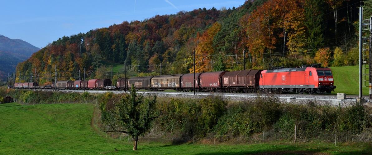 Güterzug bei Villnachern