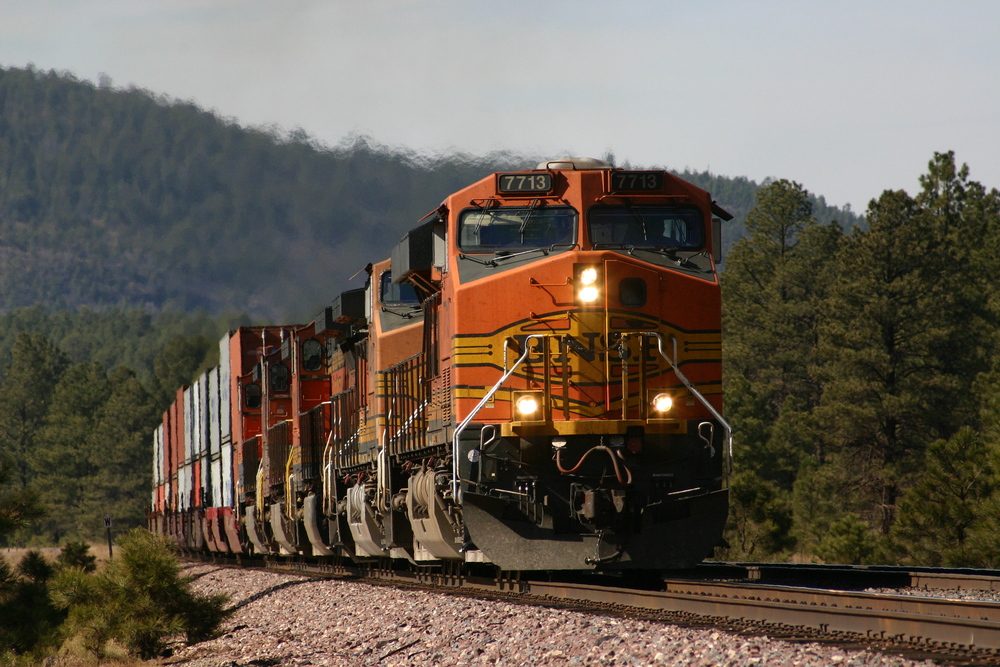 Güterzug der BNSF bei Williams