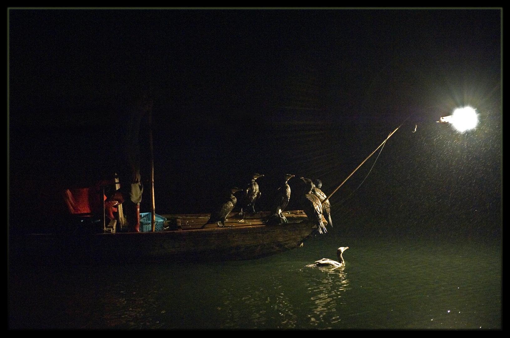 Guilin, pêche nocturne aux cormorans sur la rivière Li