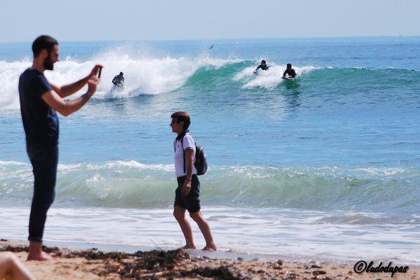 Gulliver et les surfers