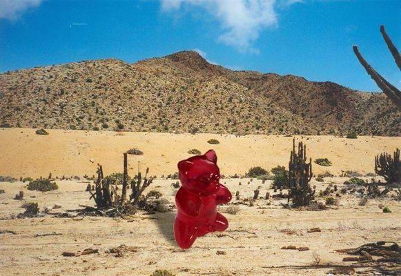 Gummibärchen in der Wüste
