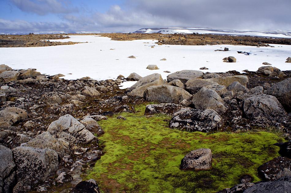 Gut zurück von der Island Trekkingtour Hornstrandir 2010 -Einleitung Reisebericht-