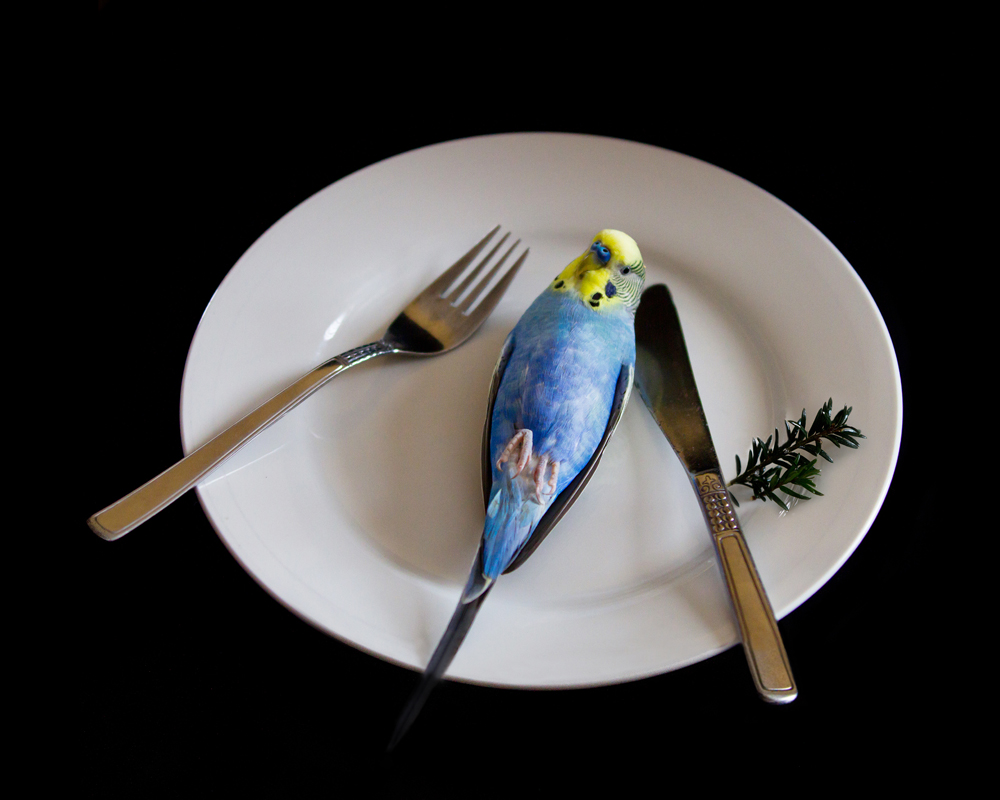 Guten Appetit!