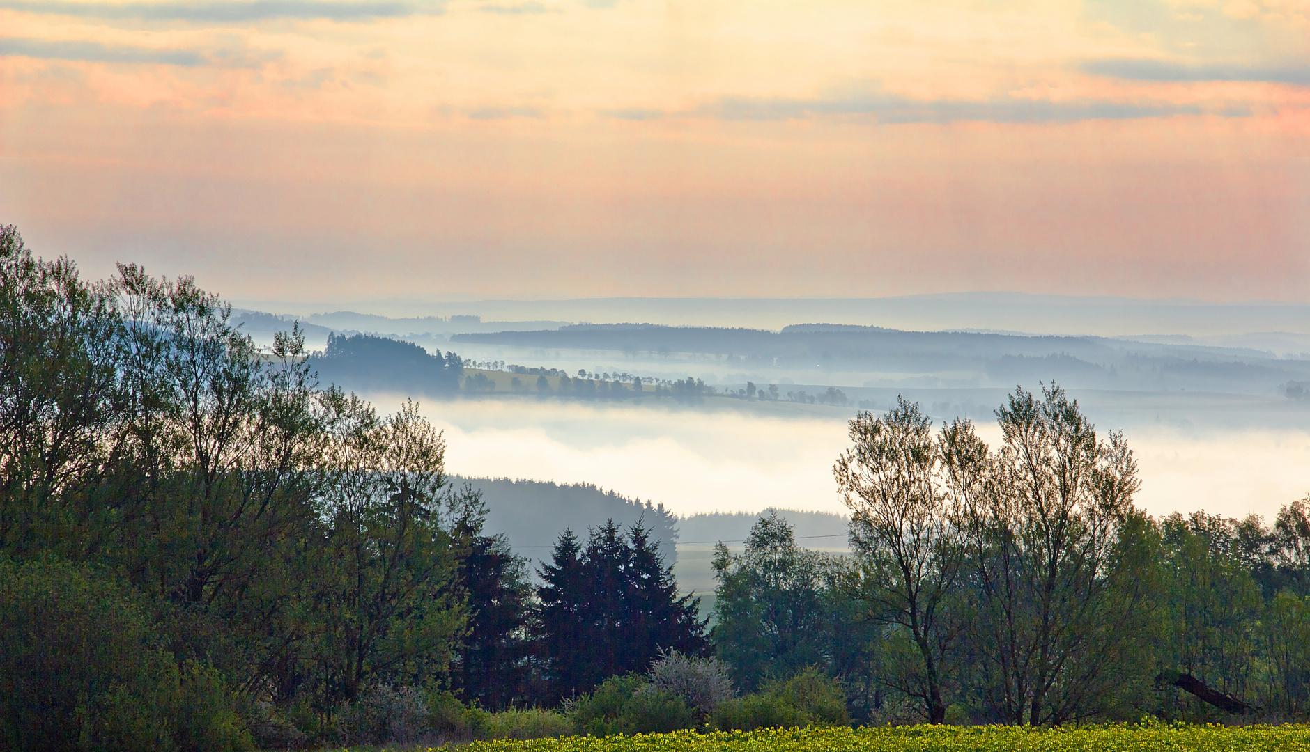 Guten Morgen Brandenburg