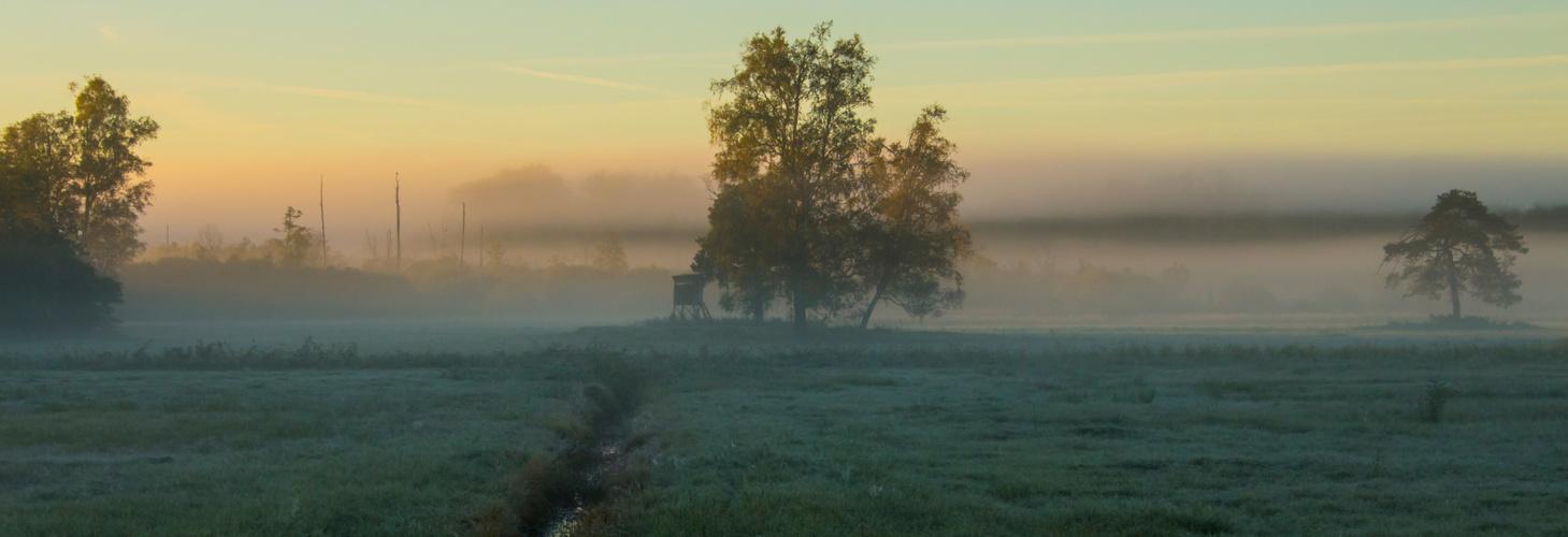 Guten Morgen Mecklenburg