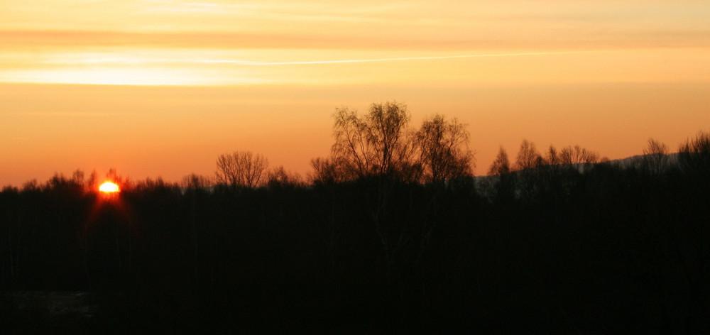 Guten Morgen mein Sonnenschein