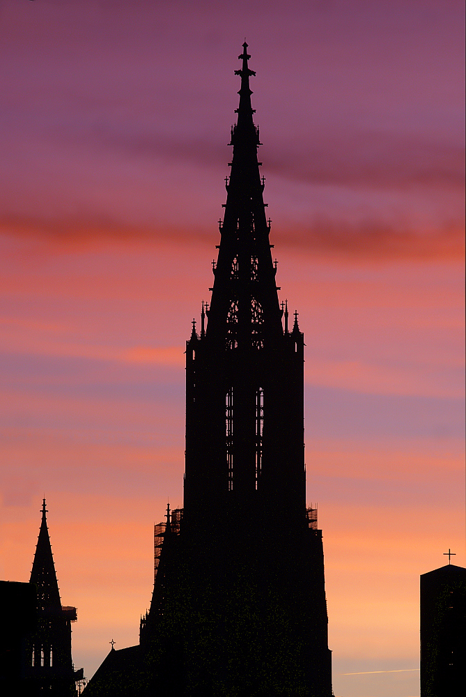 Guten Morgen Münster!!!