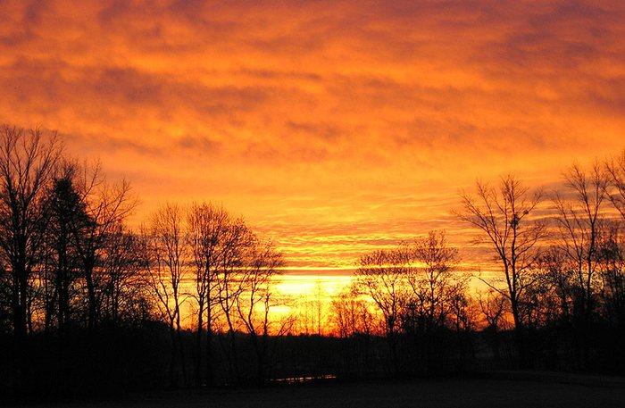 Guten Morgen sagt die Sonne ...
