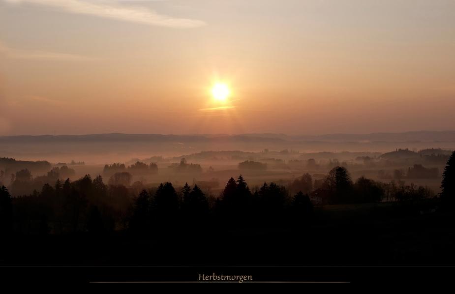 Guten Morgen Sonnenschein