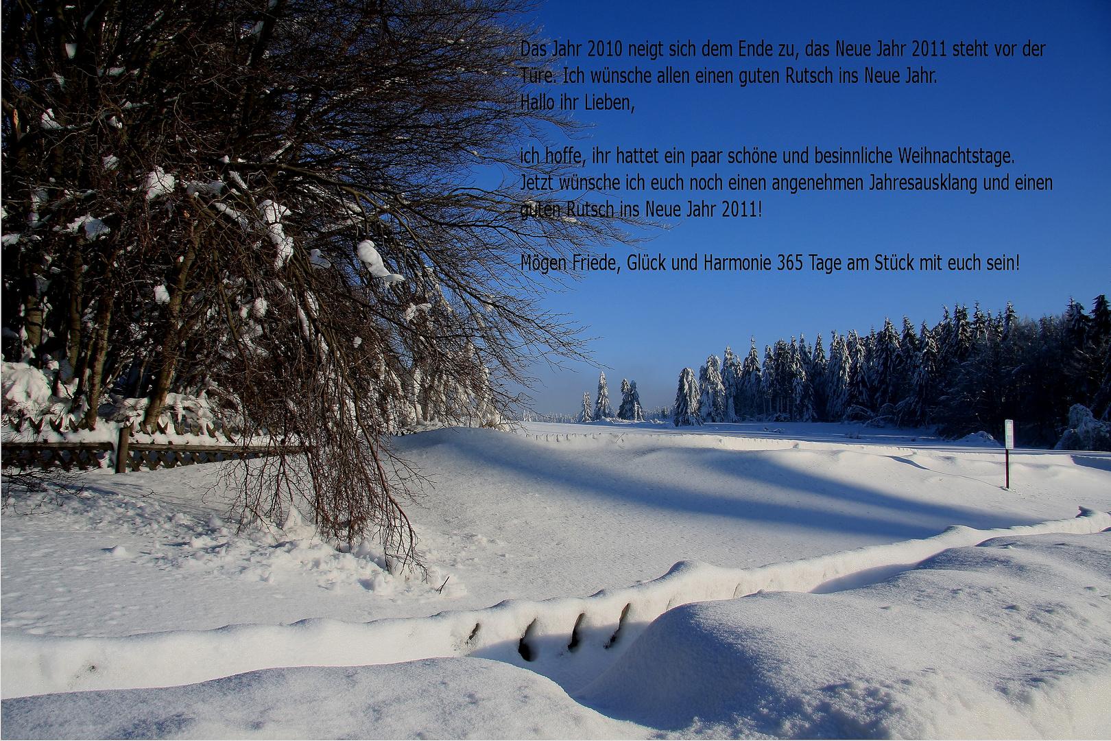Guter Rutsch ins Neue Jahr 2011!