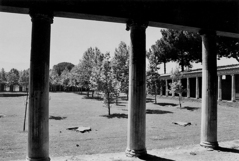 gymnasium pompeii