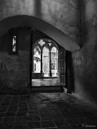 hacia la luz del claustro