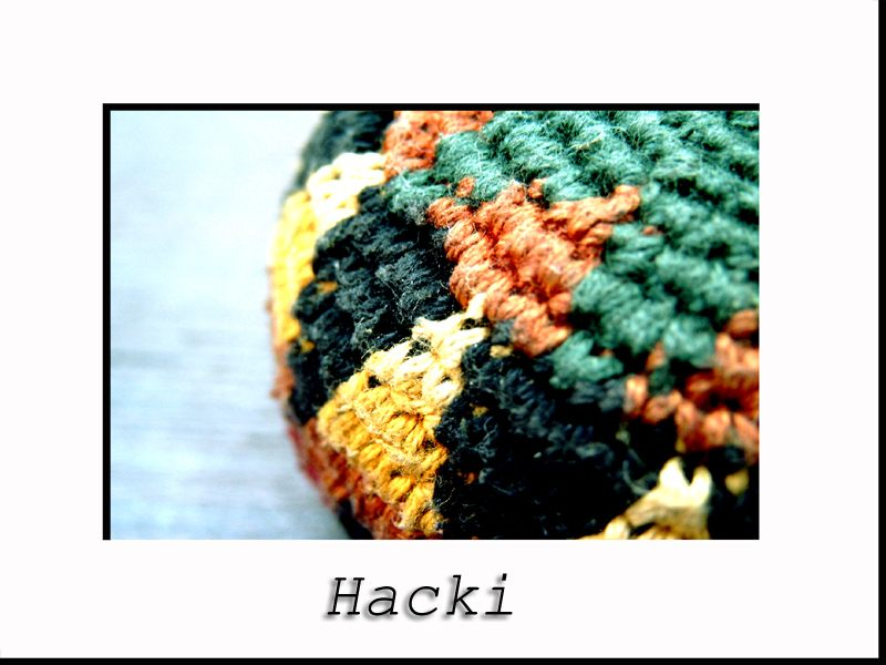 [Hacki]