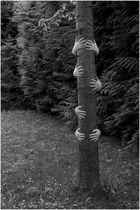 Händebaum