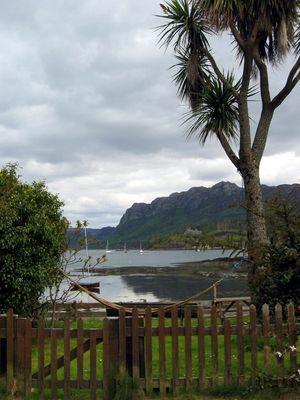 Hängematte mit Palmen...Südsee? Falsch....Schottland...Richtig !