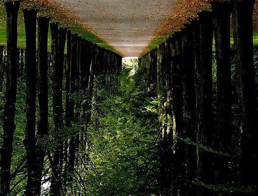 hängende gärten