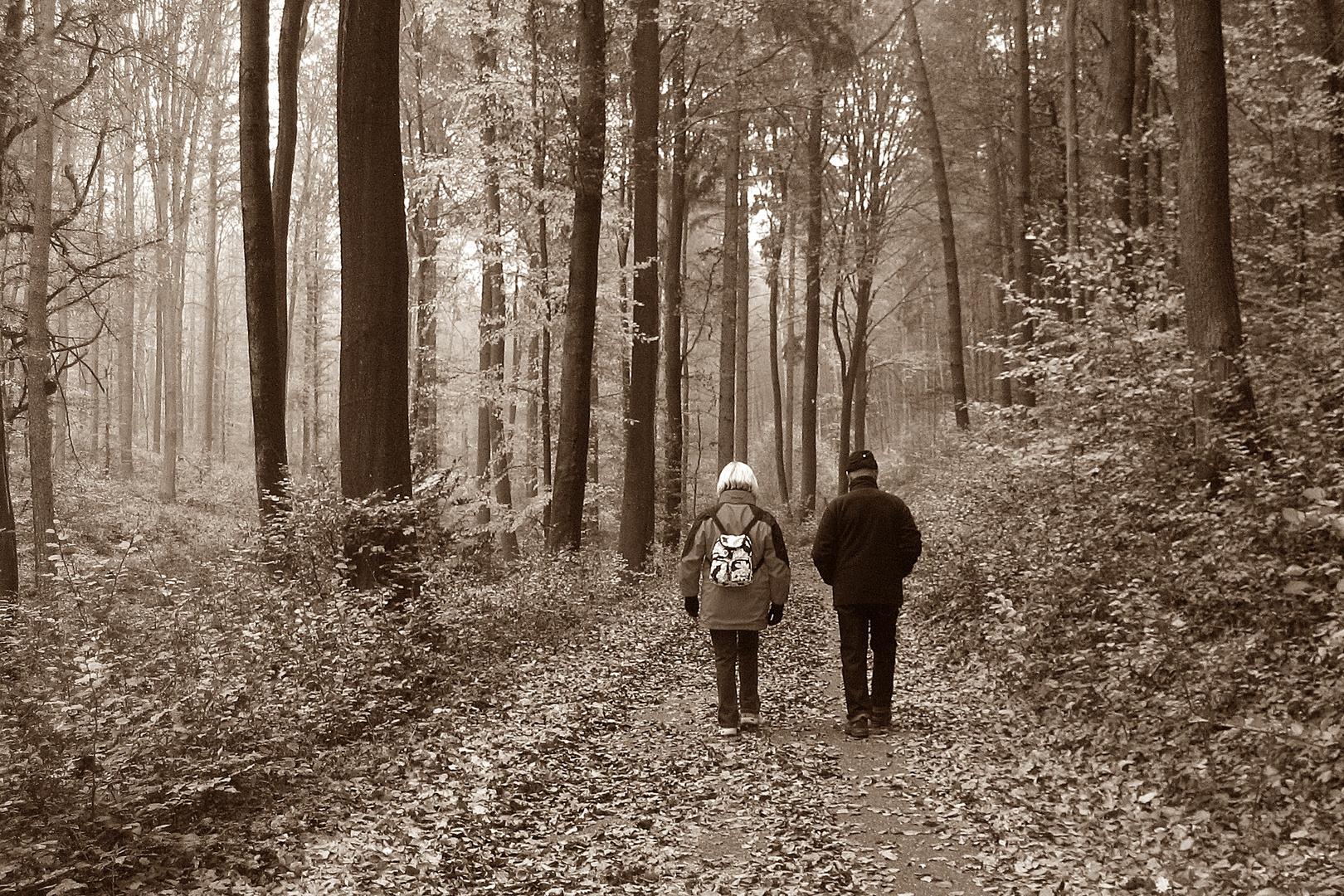 Hänsel und Gretel.......