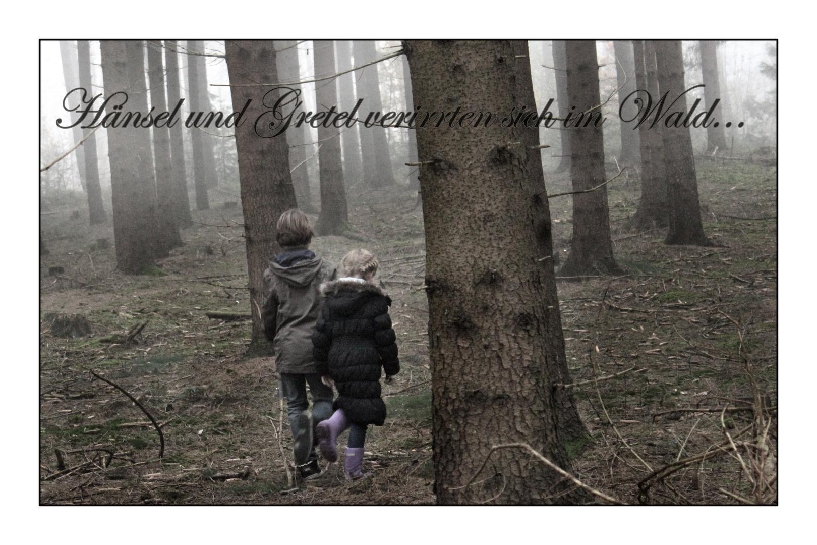 Hänsel und Gretel verirrten sich im Wald...