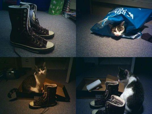 Härtetest der neuen Schuhe^^