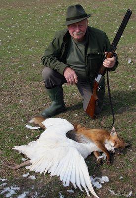 Hätte der Fuchs das Lied gekannt, hätte er die Gans nicht gestohlen.