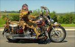 ~Häuptling~ [Cool Biker #2]