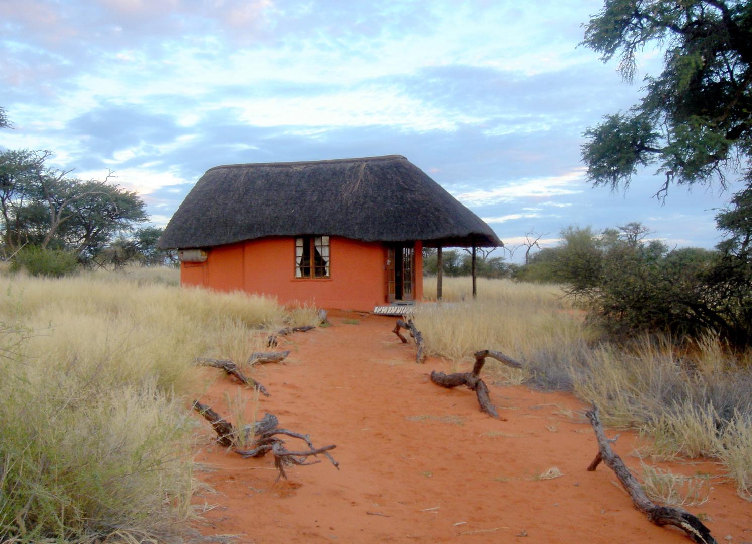 "Häuschen in """"Grünen""""Intu Afrika-Kalahari-Camelthorn-Lodge"