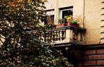 Häuser Ansichten in Bad Canstatt