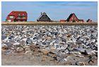 Häuser auf Baltrum