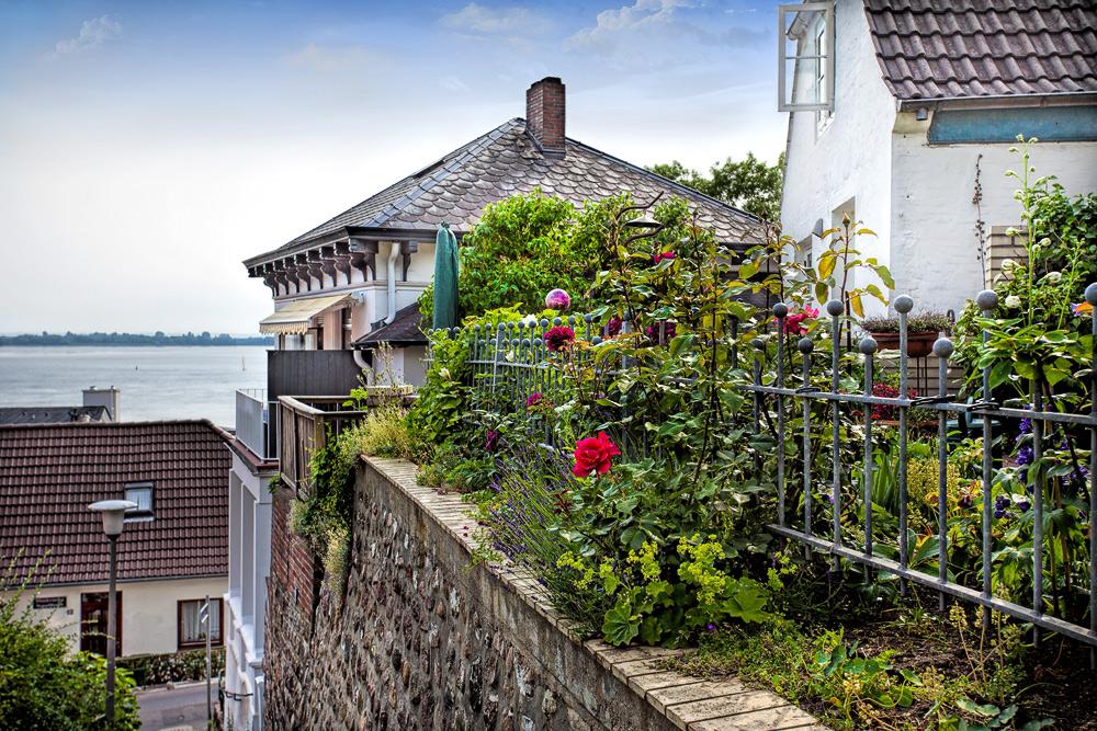 Häuser mit Elbblick