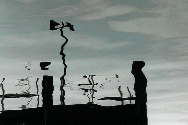 Hafen reflection