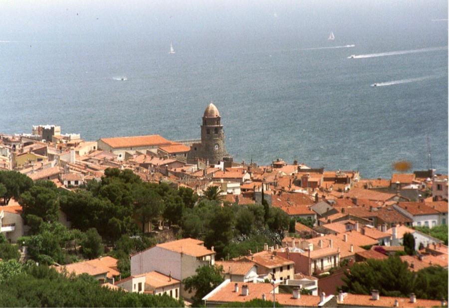 Hafen von Collioure 01