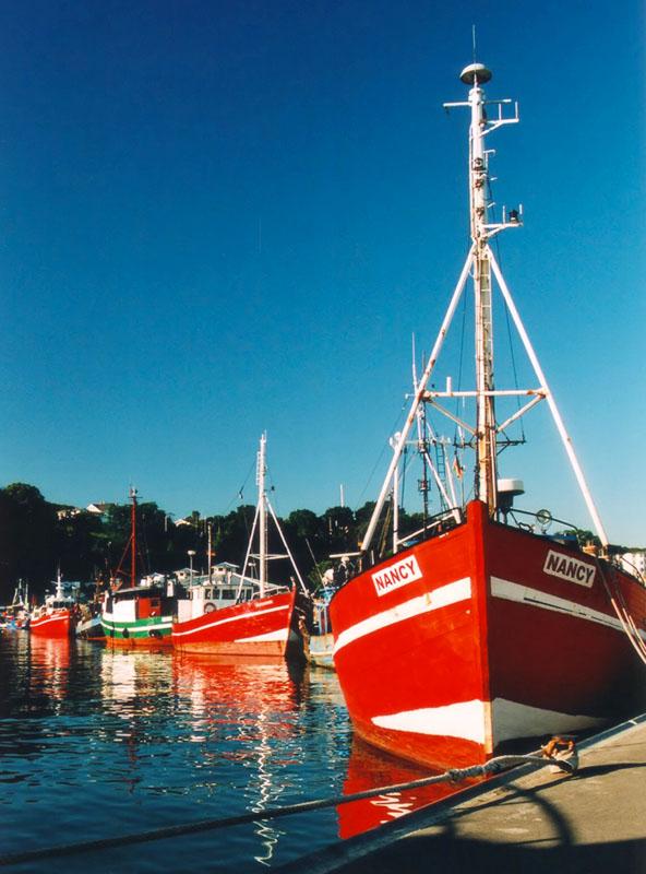 Hafen von Sassnitz, Rügen