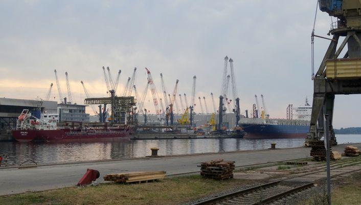 Hafenkraniche